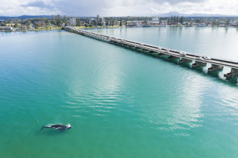 A southern right whale which has entered Wallis Lake near Forster now has special protection under a special issue ordered by the NSW government.