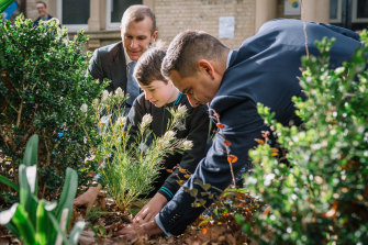 Planning Minister Rob Stokes (left), local MP Alex Greenwich (right), and students of Bourke St Public School at a tree planting ceremony.