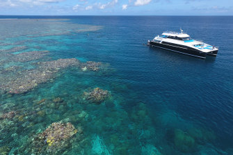 Some Great Barrier Reef tours are running at 5 per cent capacity.