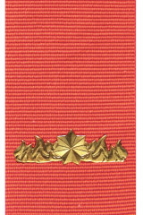 Commendation for Gallantry