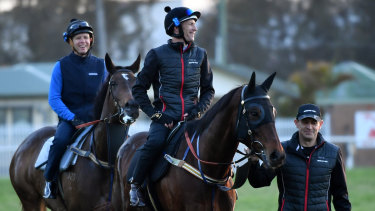 Perfect smiles: Chris Waller leads Winx and Hugh Bowman after a morning workout at Rosehill on Thursday.