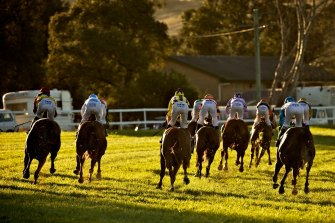 Racing heads to Casino on Friday with a nine-race card.