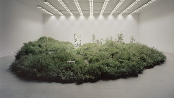 Where the grass seems greener: Australia floats sustainability at Architecture Biennale