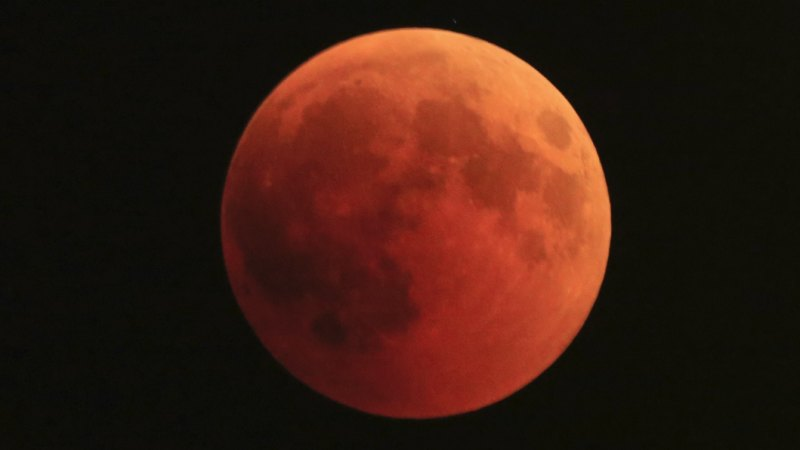red moon qld - photo #44