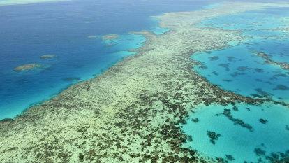 Australia saves Barrier Reef World Heritage status, cops climate deadline