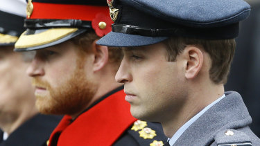 Prince Harry and Prince William, pictured together in 2015.