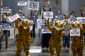 PETA supporters gather on the steps of Los Angeles City Hall to call on the city to ban using tigers, lions and other wild animals in circuses in a file photo.