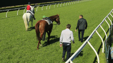 Chris Waller and Charlie Duckworth check on Nature Strip.