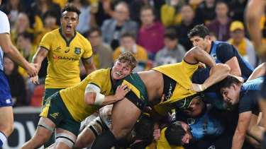 Bigger test to come: The Wallabies showed signs of improvement against Argentina.