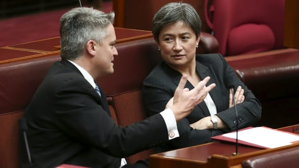The unlikely accord between Penny Wong and Mathias Cormann