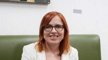 Labor member for Granville Julia Finn has stepped down as she tries to clear her name of branch stacking allegations.