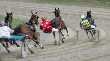 Teenager driver Will Rixon won the Canberra Cup last week.