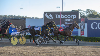 Baby on board: Our Uncle Sam driver Frisby could miss key heat