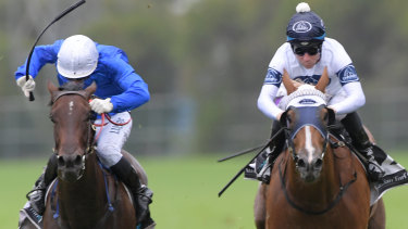 Promising: Blazing Miss, right, runs second to Amercement in the Widden Stakes.