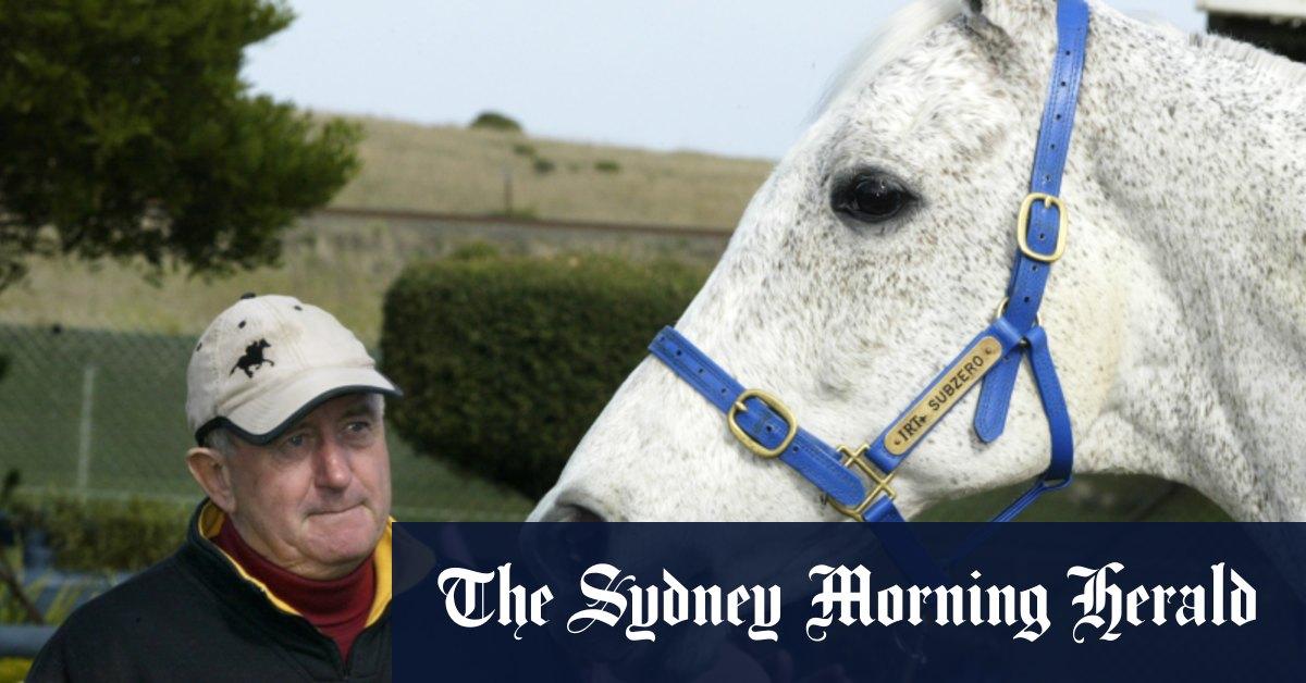 Former Melbourne Cup winner Subzero dead at 32 – Sydney Morning Herald