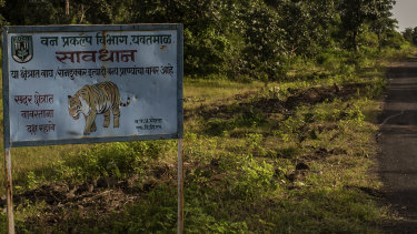 A sign warns of tigers along a road that cuts through the Forest Reserve near Pandharkawada, India.