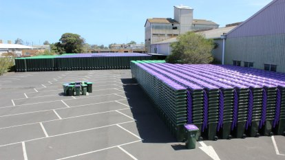 Hobsons Bay introduces four bins, fortnightly landfill collection