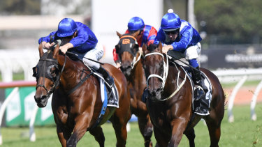 Too good: Winx looms up and goes past Happy Clapper in the George Ryder Stakes last year.