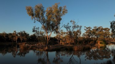 The source aquifer for the Doongmabulla  Springs is not known, fuelling fears that the coal mine will damage the rare desert oasis.