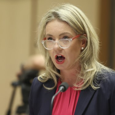 Senator Bridget McKenzie oversaw the government's sports infrastructure program, which was criticised by an Auditor-General's report.