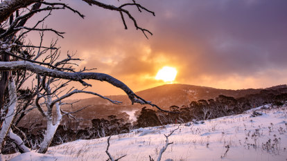 Eight people rescued after being trapped by heavy snow on Mt Hotham
