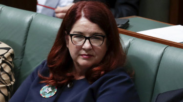 "New Environment Minister Melissa Price has lashed Labor's ""witch hunt"" of the Great Barrier Reef Foundation."