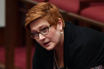 Foreign Minister Marise Payne has outlined the diplomatic principles that will guide her.