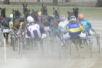 Harness racing officials face a nervous wait to find out if COVID-19 is out of control in the industry.