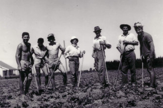 Lucy (centre) working in the fields on farms in Werribee in the 1960s.