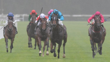 There will be eight races at Gosford today.