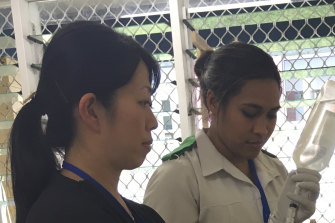 Japanese medical support in Samoa during a measles outbreak.