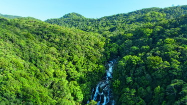 Mossman Gorge in far north Queensland.