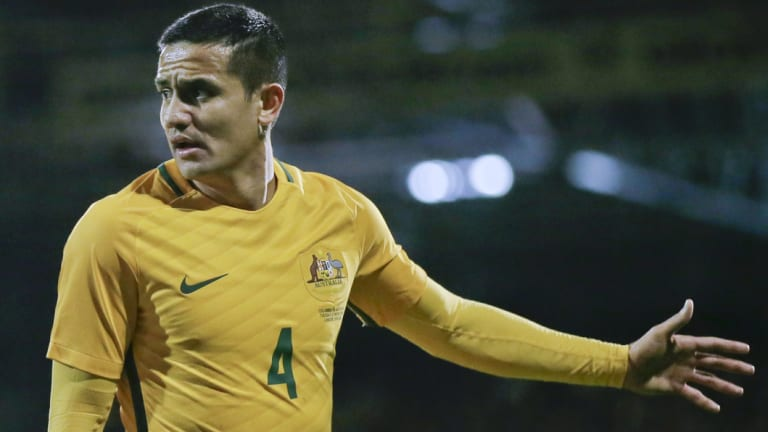 Controversial selection: Tim Cahill has been given the nod.