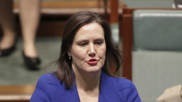 Speaking out: Kelly O'Dwyer.
