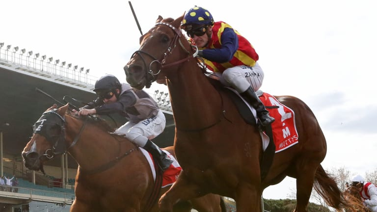 In the Everest: Mark Zahra drives Nature Strip to victory in the McEwen Stakes on Saturday.