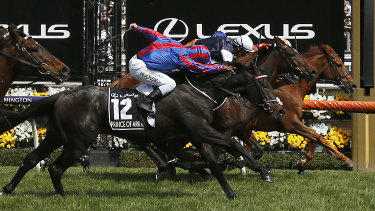 Vow And Declare put his head out to win the Melbourne Cup last year.