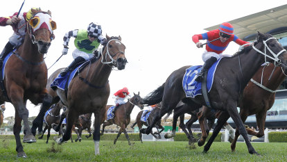 Rough around the edges can't distract from main event at Randwick