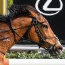Grand Promenade on proven course for Melbourne Cup