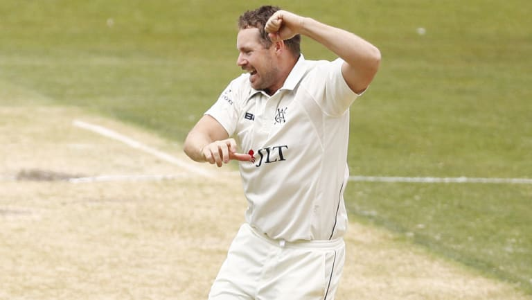 In the groove: Spinner Jon Holland celebrates after dismissing Western Australia's William Bosisto.