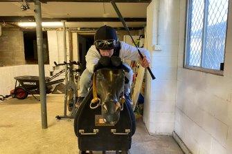 Brock Ryan prepares for his Golden Rose ride on Jamaea earlier this week.