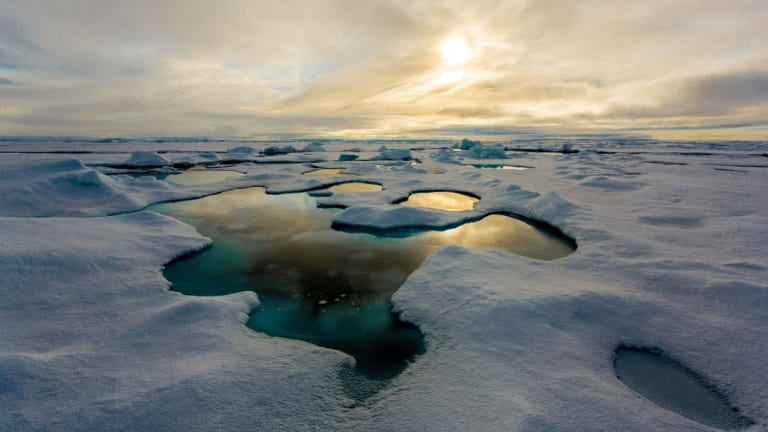 Tiny particles known as microplastics have been found in record levels in Arctic sea ice.