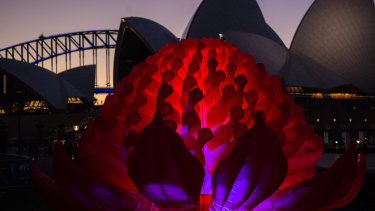 The Vivid Sydney Light Walk switches on.