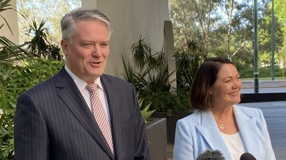 Cormann backs Harvey leadership, throws doubt on negative polling