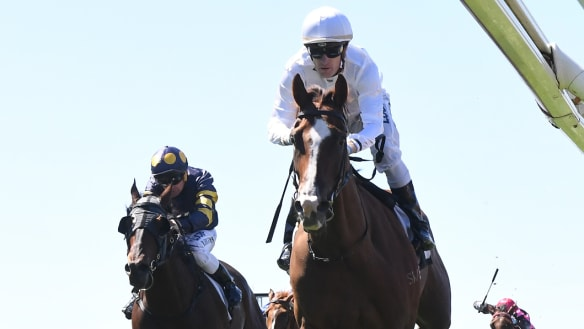 Dream barrier: Caulfield Cup favourite Kings draws nicely