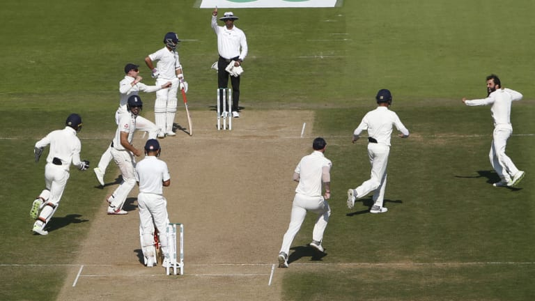 England celebrate Virat Kohli's wicket, taken by Ali.
