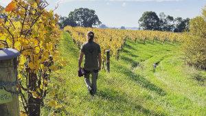 Justin Jenkins in his Fleet vineyard.