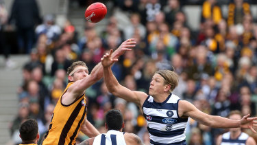 Geelong's Rhys Stanley goes up against Hawthorn's Ben McEvoy during round 18 of the 2019 season.