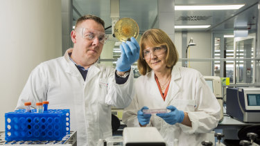 Professor Maija Kohonen-Corish and Associate Professor Brian Oliver at Woolcock Institute's new microbiome lab in Glebe.