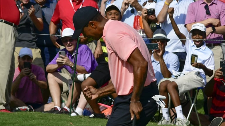 Joy: Tiger Woods felt in control throughout his round as he took a share of the lead.