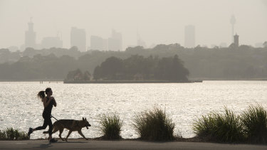 Sydney's smoke pollution has been running at record levels, the government said.